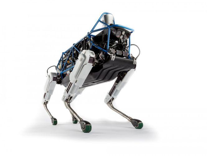 Robotdog Spot